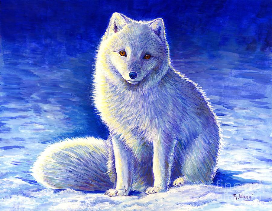 Colorful Winter Arctic Fox by Rebecca Wang