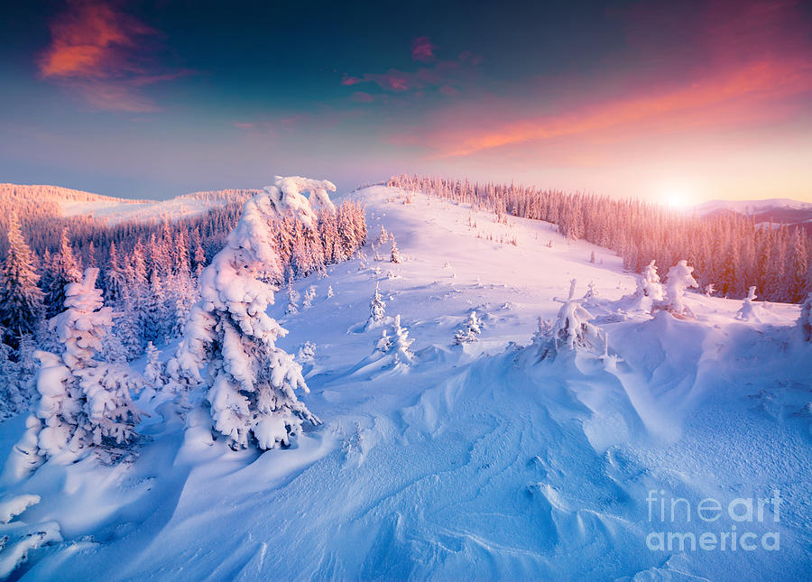 Overcast Photograph - Colorful Winter Sunrise In The by Andrew Mayovskyy
