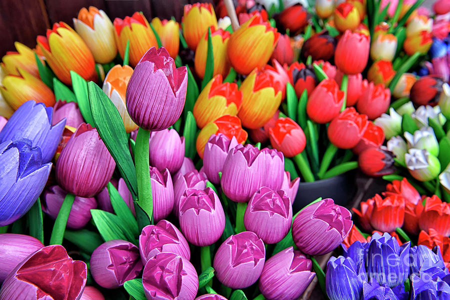 Colorful Wooden Tulips by Norman Gabitzsch