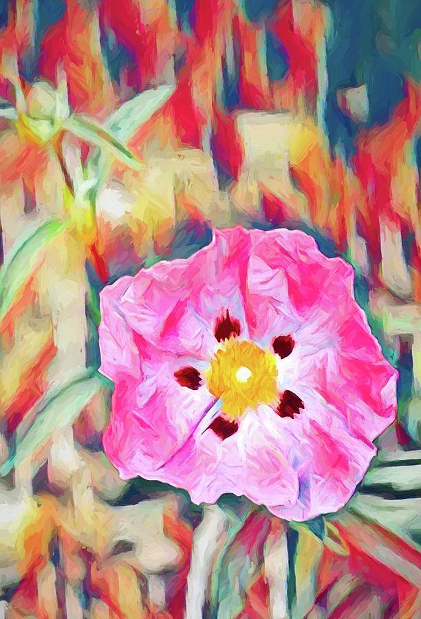 Colors 160 by Pamela Cooper