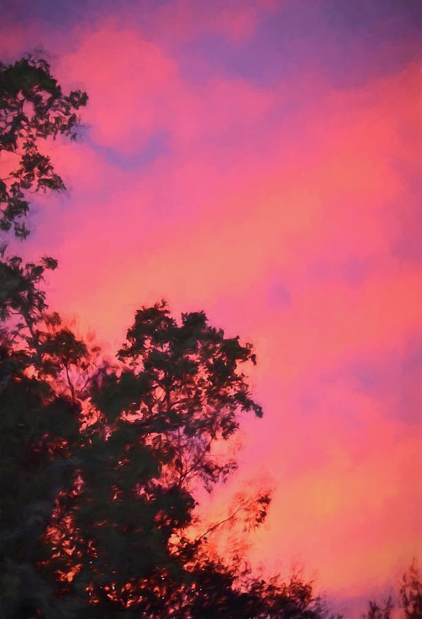 Colors 161 by Pamela Cooper