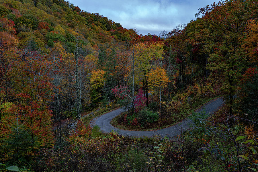 Colors around the bend by Kelly Kennon