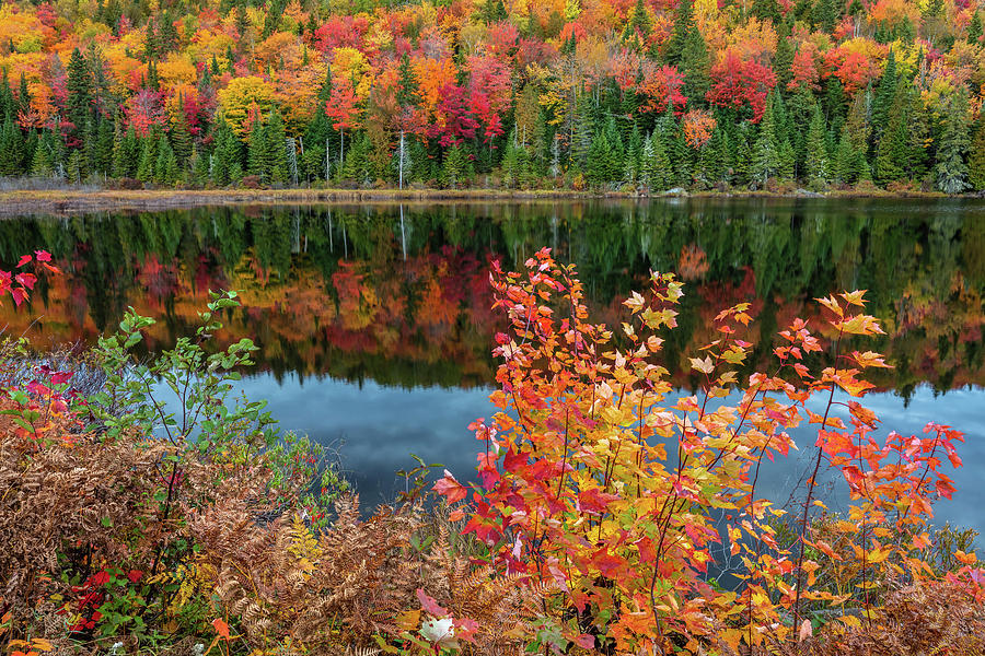 Colors of Aurtumn by Pierre Leclerc Photography