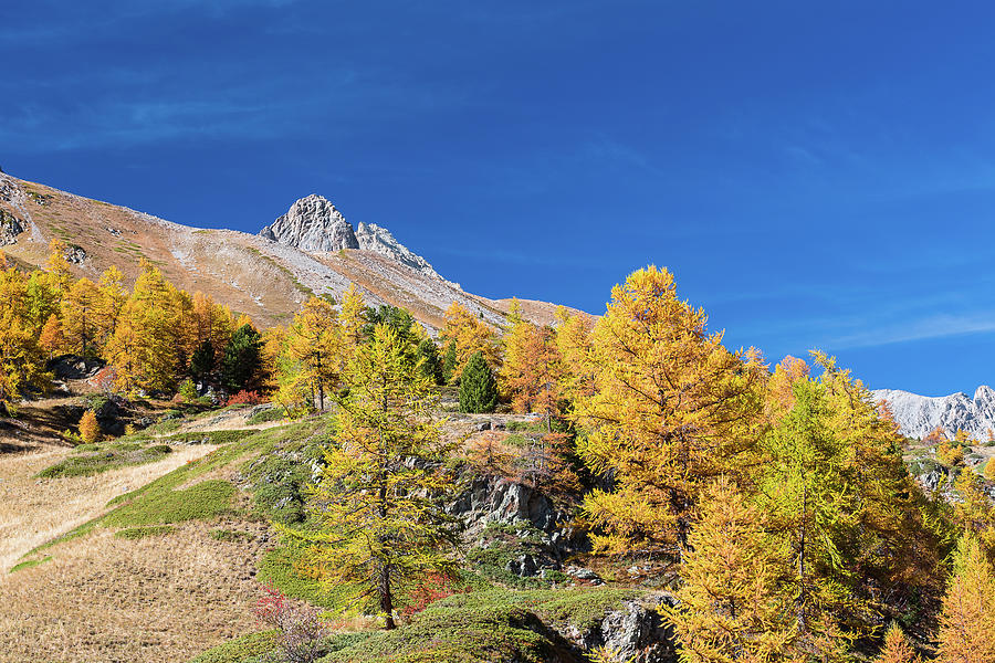 Colors of fall - 10 - French Alps by Paul MAURICE