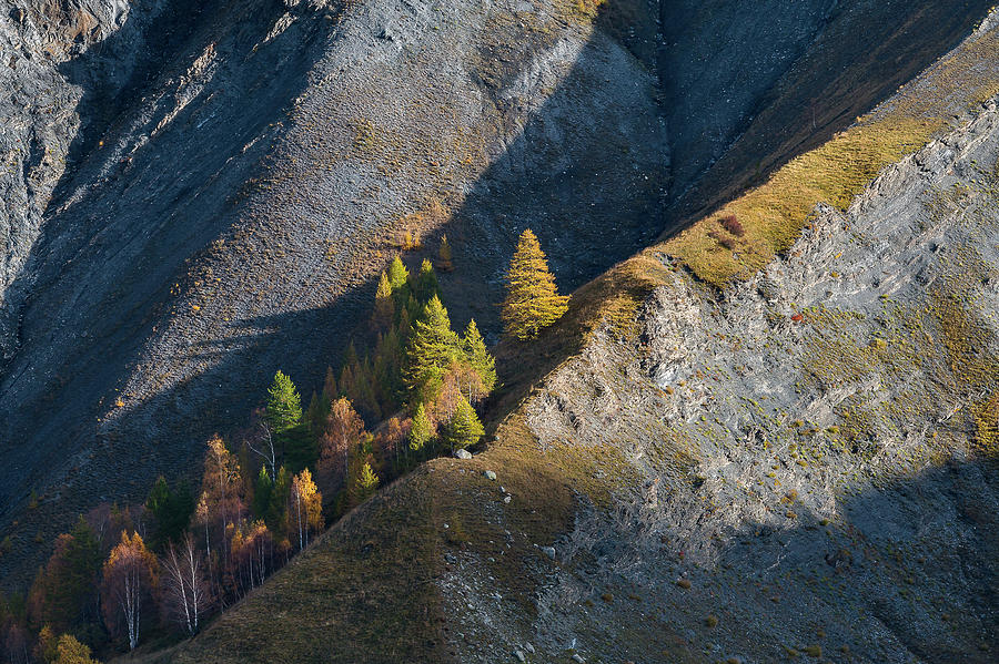 Colors of fall - 4 - French Alps by Paul MAURICE