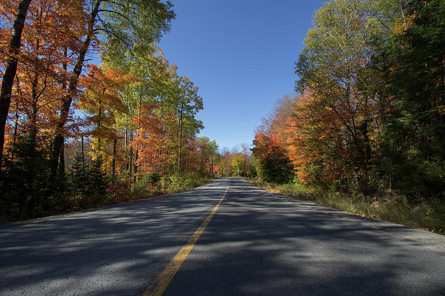 Colourful Journey - Apsley - Ontario, Canada by Spencer Bush