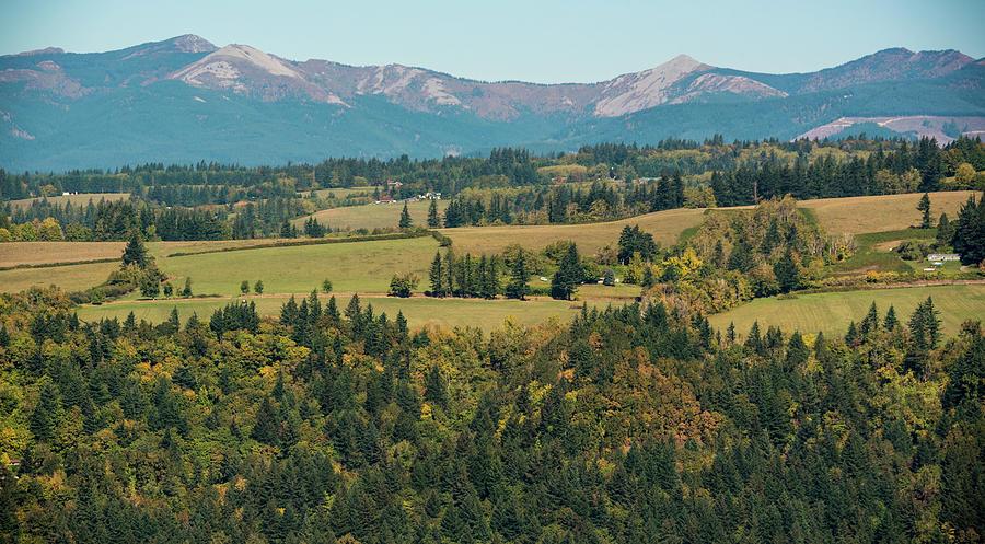 Columbia Valley by Kristopher Schoenleber