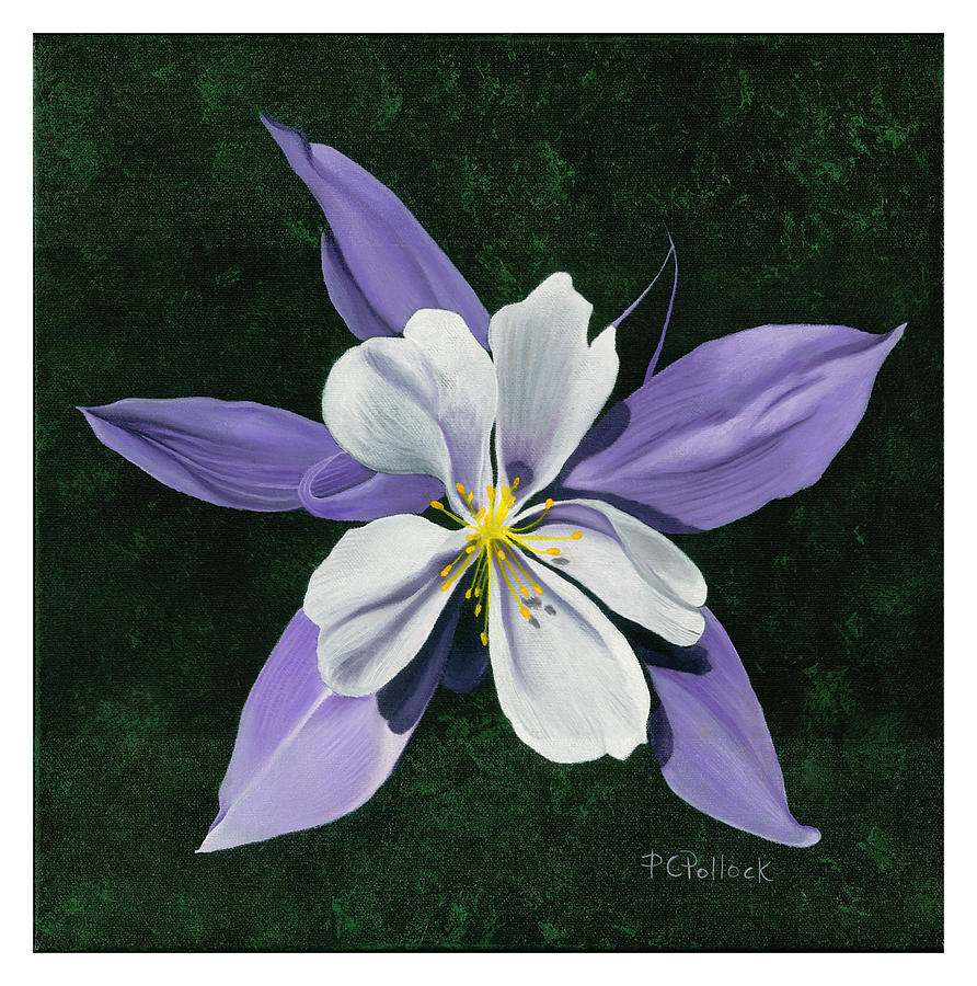 Columbine Flower Painting By Patti Chaney Pollock