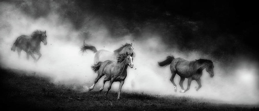 Coming Home by Ryan Courson