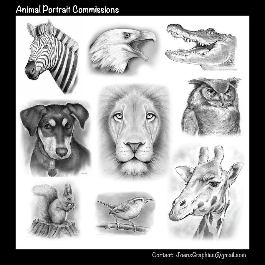 Commissioned Animal Portraits Drawing