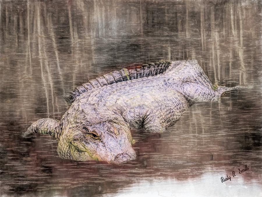 Composite art photograph of an alligator in a shallow bog. by Rusty R Smith