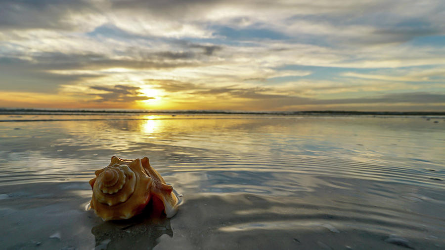 Marco Island Photograph - Conch Sunset by Joey Waves
