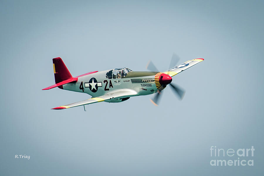 Confederate Air Force P-51 Mustang by Rene Triay Photography