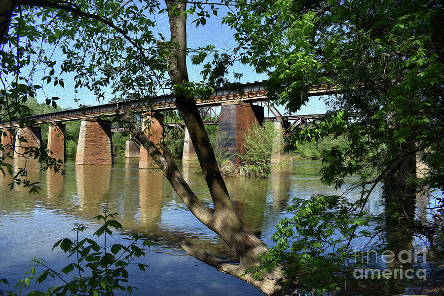 Painted Congaree Trestels From The East Photograph