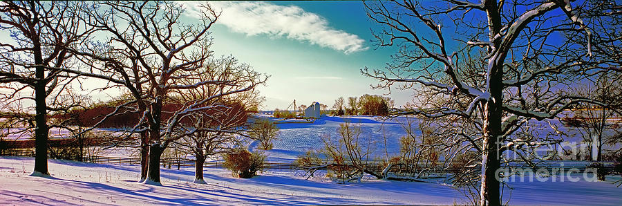 Conley Road Farm white barn pasture road oak trees winter 815061 by Tom Jelen