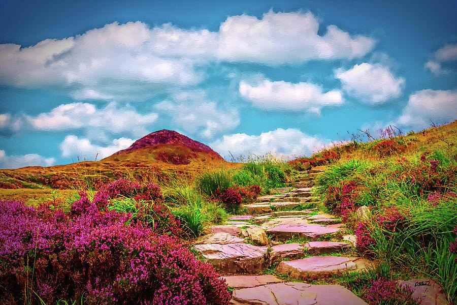 Connemara National Park Ireland - DWP1971997 by Dean Wittle