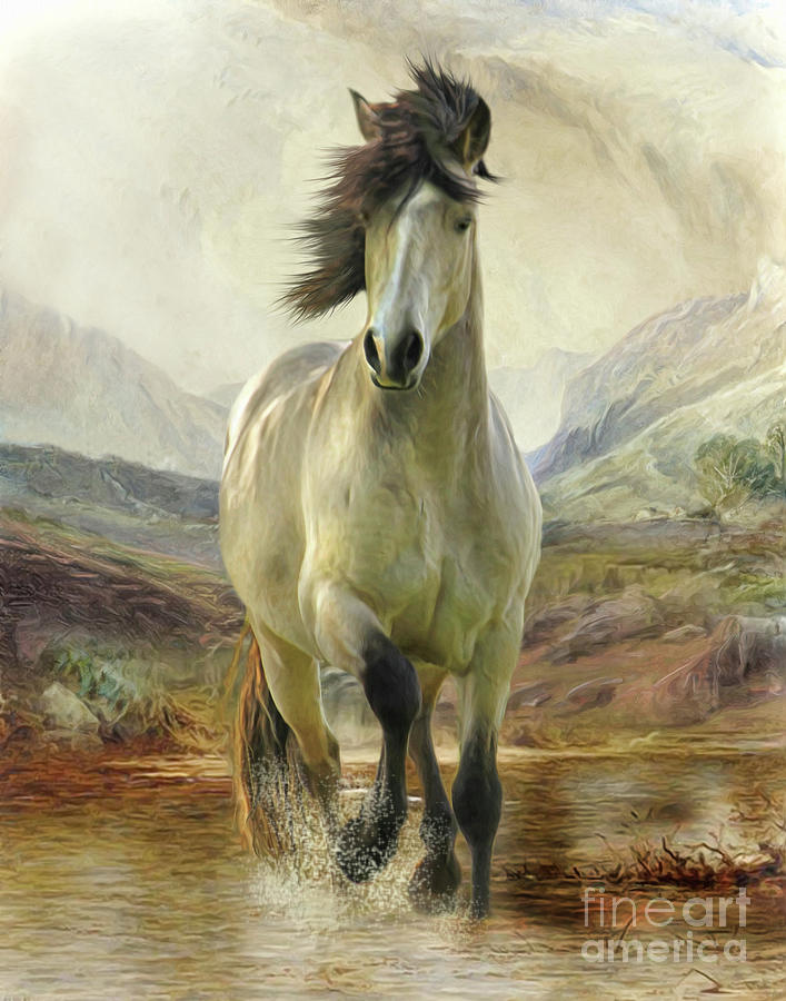 Connemara Pony of the Moors by Trudi Simmonds