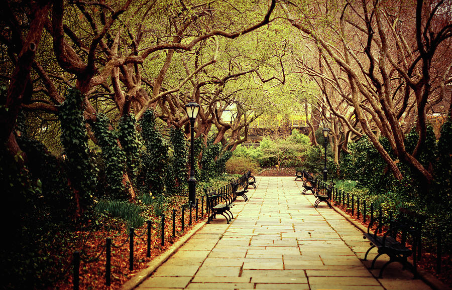 Conservatory Garden, Central Park, New Photograph by Vivienne Gucwa
