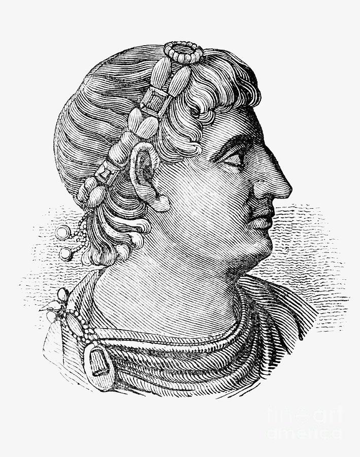 Laurel Drawing - Constantine The Great  Roman Emperor  by English School
