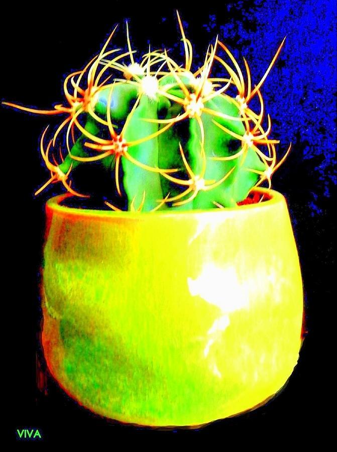 Contemporary Cactus by VIVA Anderson
