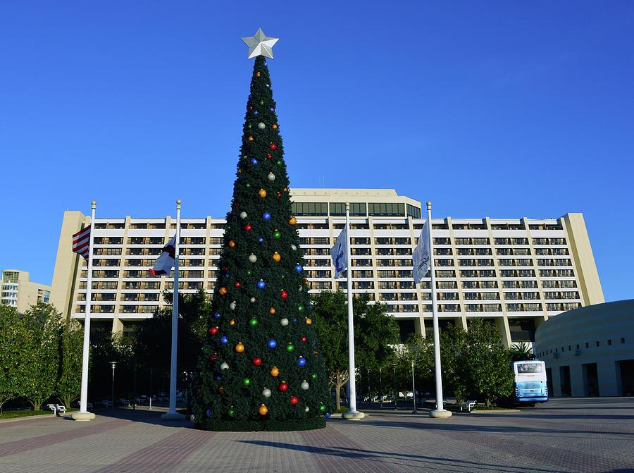 Contemporary Christmas Tree.Contemporary Christmas Tree