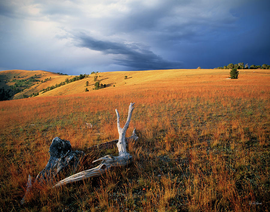 Continental Divide Photograph - Continental Divide by Leland D Howard