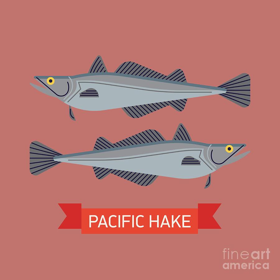 Symbol Digital Art - Cool Vector Pacific Hake Fish by Mascha Tace