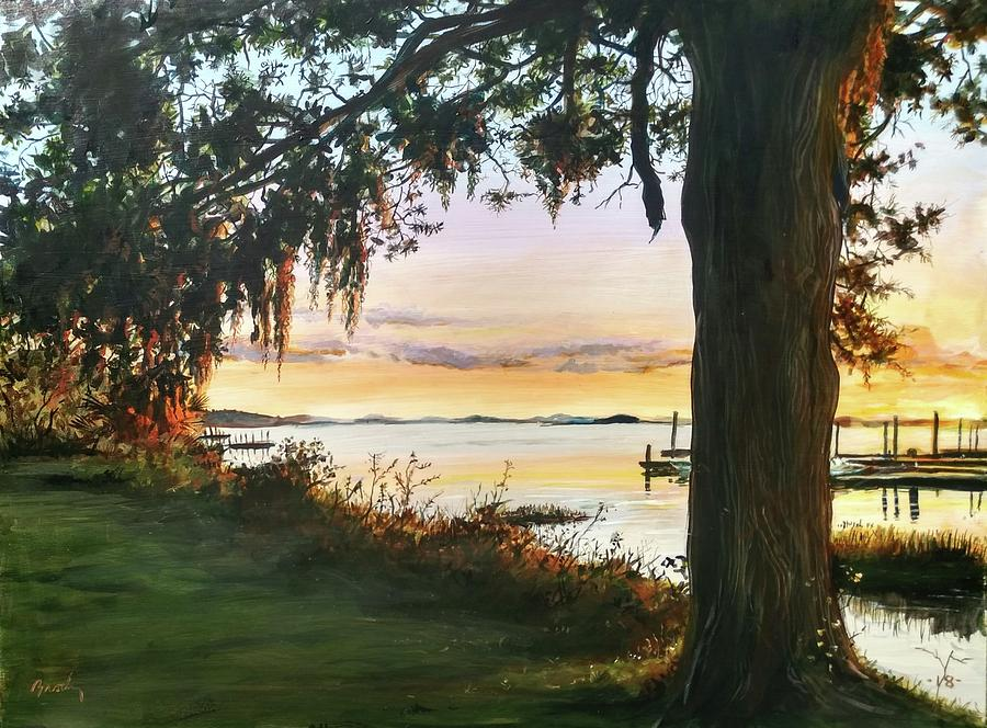 Cooper River Sunset by William Brody