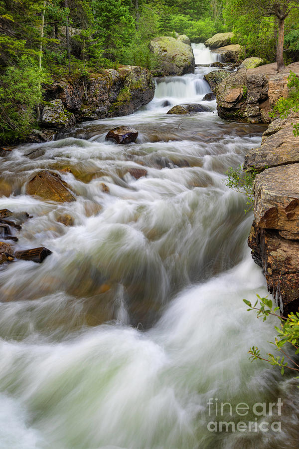 Copeland Falls flowing in Rocky Mountain National Park by Ronda Kimbrow