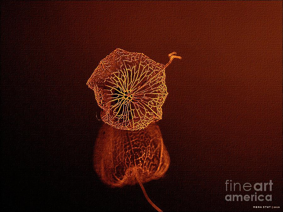 Copper Filigree Photograph