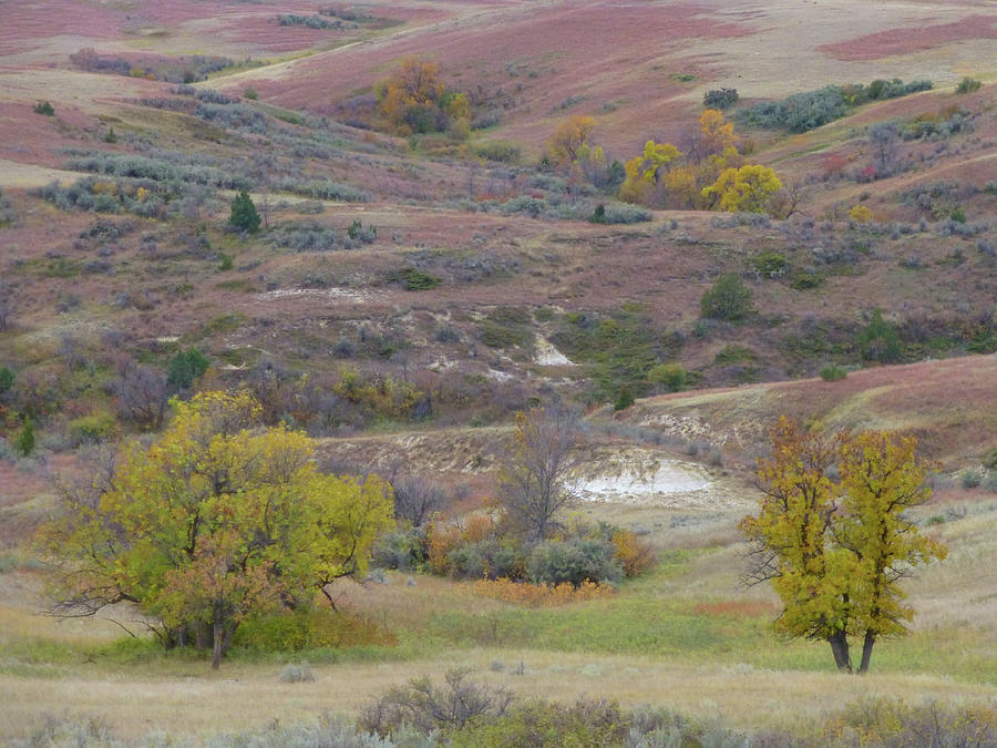 North Dakota Photograph - Copper Hills Autumn by Cris Fulton