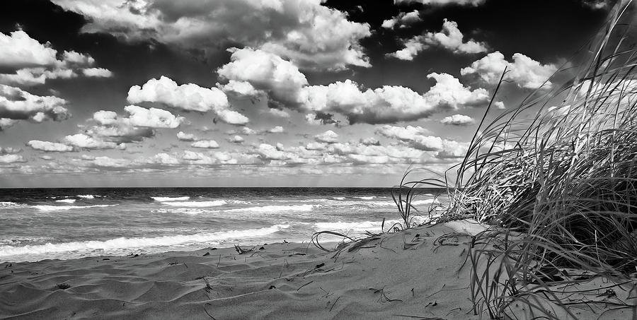 Coral Cove Beach No 1 by Steve DaPonte