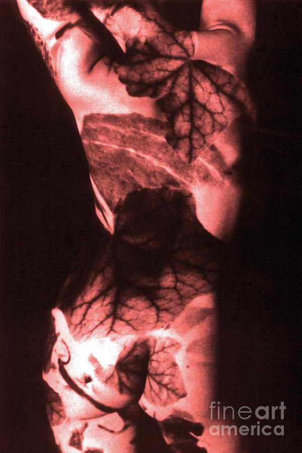CORAL FLORAL BODY SOUND by SILVA WISCHEROPP