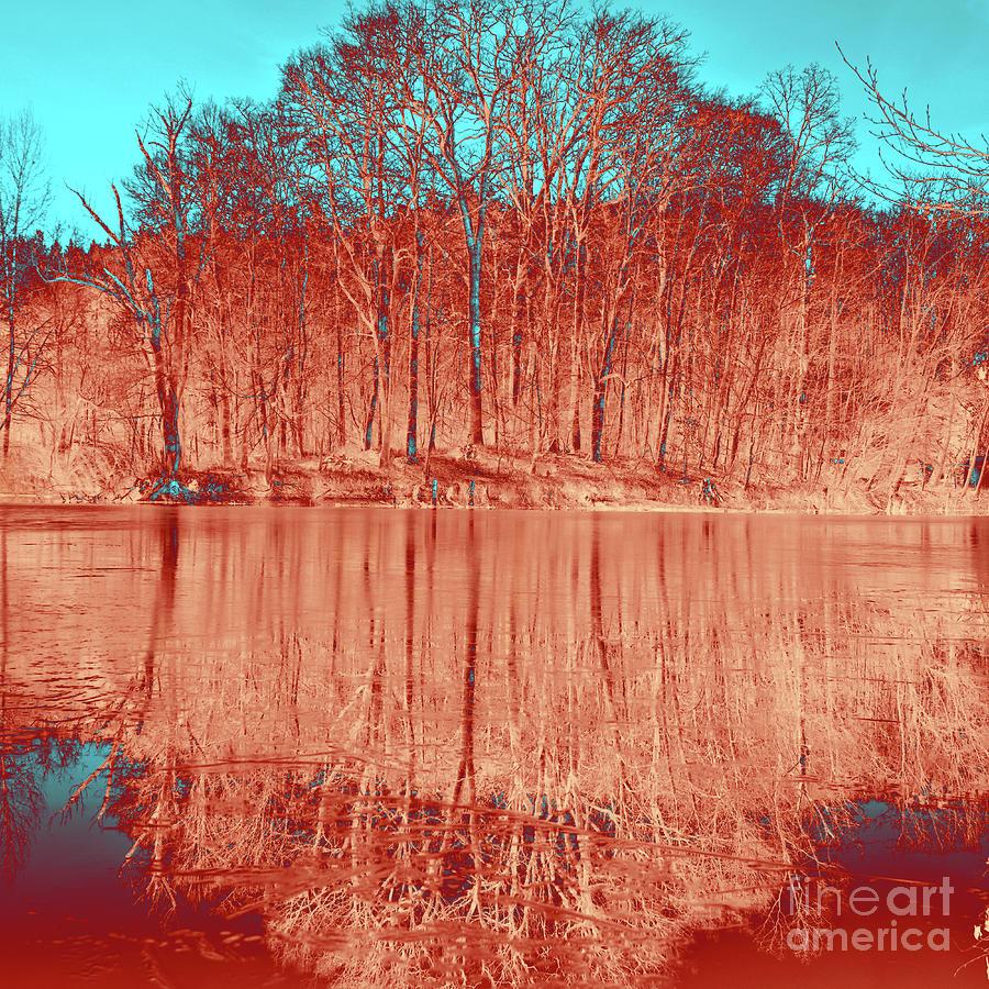 Coral Meditative Power of Trees by SILVA WISCHEROPP