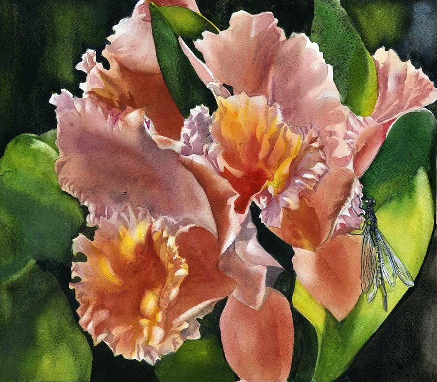 coral orchid by Alfred Ng