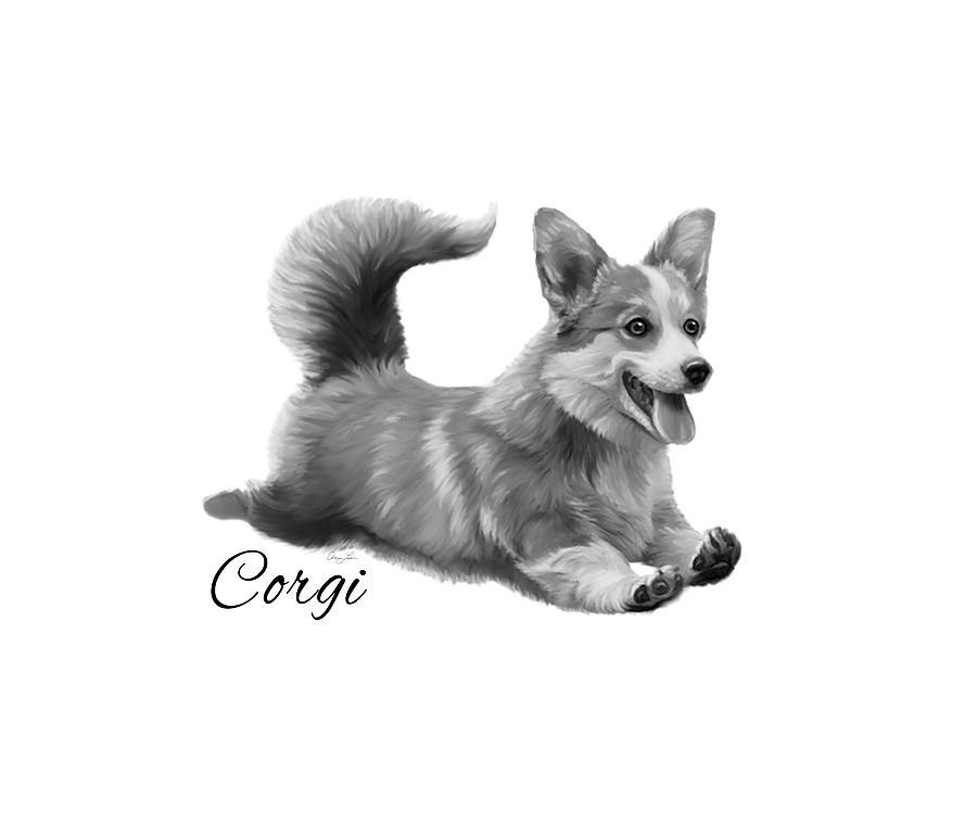 Corgi by Ann Lauwers