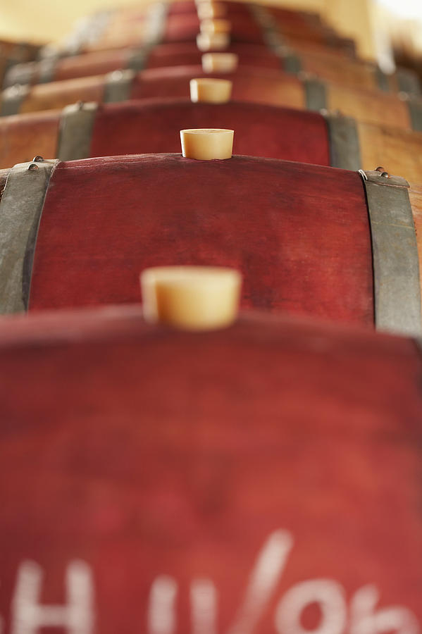 Corked Wine Casks Photograph by Moodboard