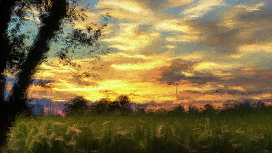 Cornfield Sunset by Jason Fink