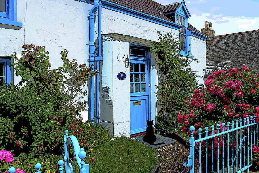 Cornwall Cottage Cat by Robert Blandy Jr
