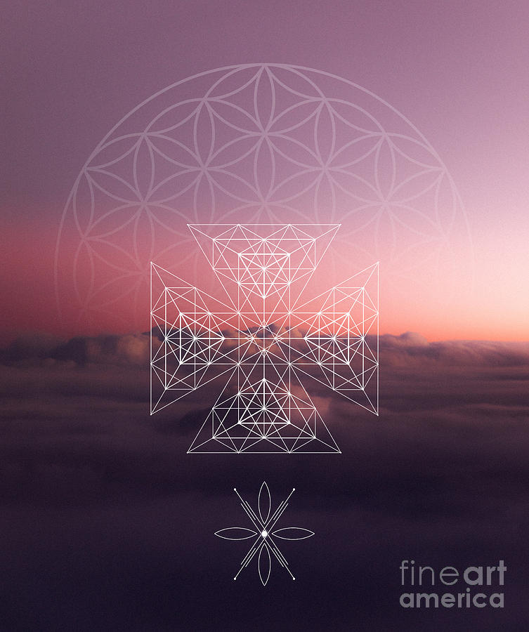 Cosmic Flower of Life by Nathalie DAOUT