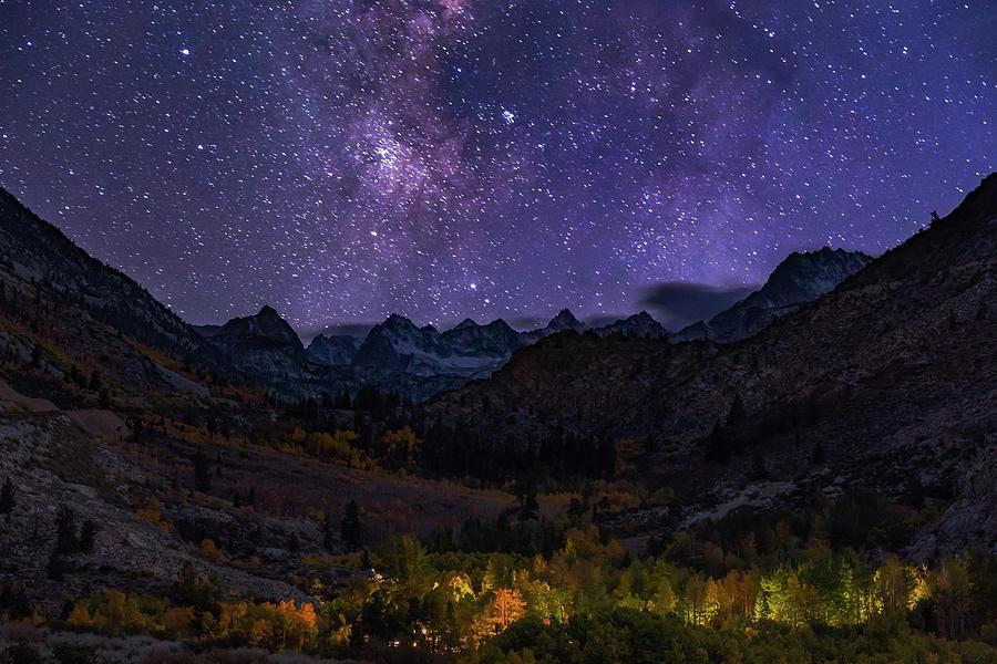 Cosmic Nature by Tassanee Angiolillo