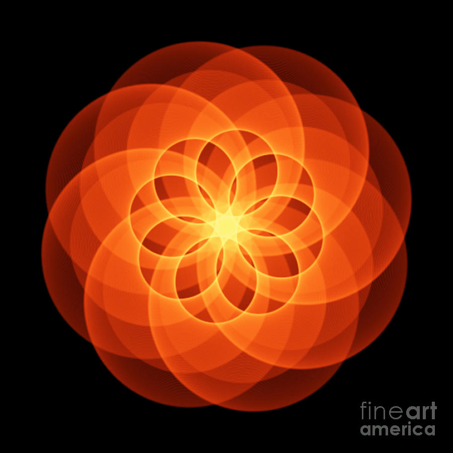 Cosmic Wheel  Abstract Sacred Geometry by Nathalie DAOUT