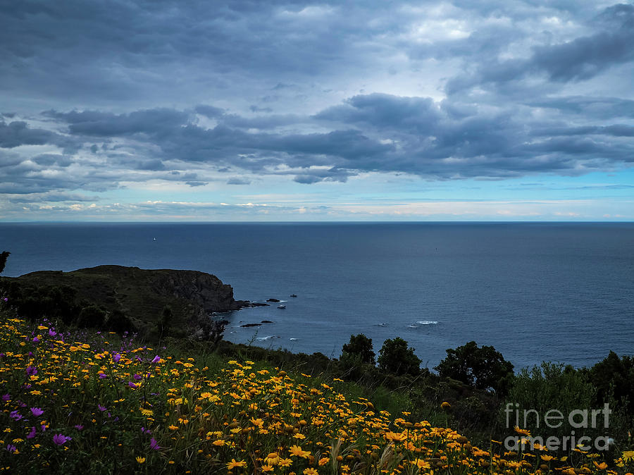 Costa Brava by Mary Capriole