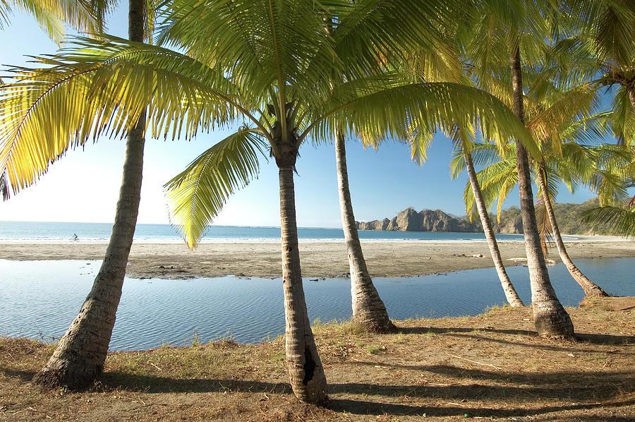 Costa Rica, Tropical Beach Photograph by John Coletti