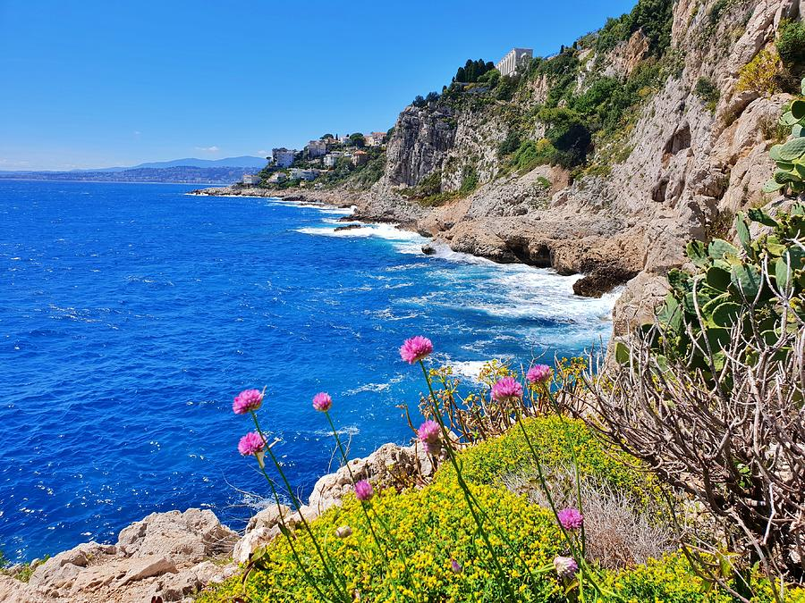 Cote d'Azur View by Andrea Whitaker