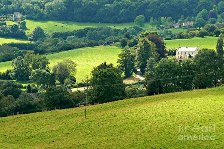 Cotswolds Fields S W England by Rod Jellison