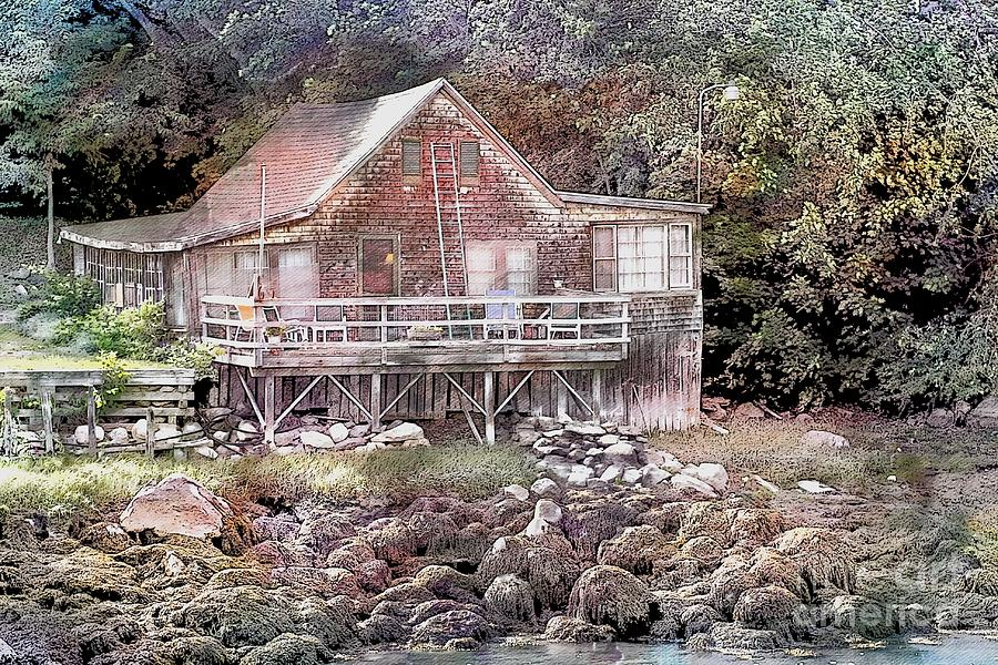 Cottage On The River by Marcia Lee Jones