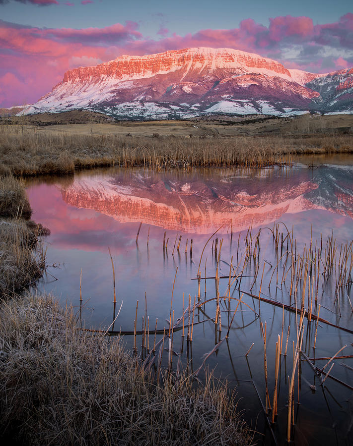Cotton Candy Reflection / Augusta, Montana  by Nicholas Parker