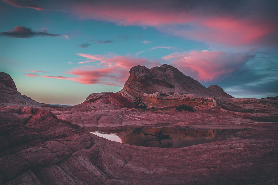 Cotton Candy Sky by Ryan Lima