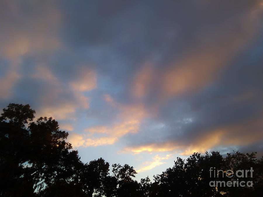 Sky Photograph - Cotton Sky by Robert Knight